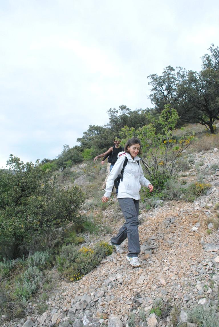 france hike 111