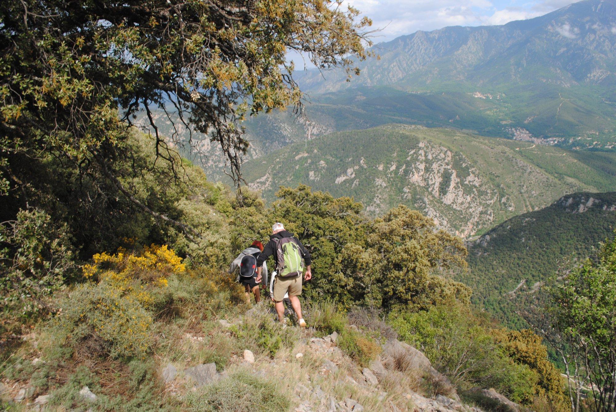 france hike 160