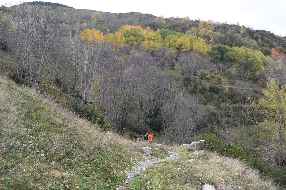 Vall de Boi 4
